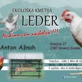 Ekološka kmetija LEDER