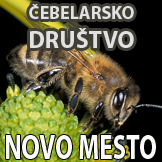 ČD Novo mesto