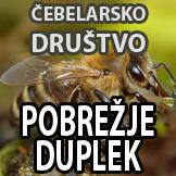 ČD Pobrežje Duplek