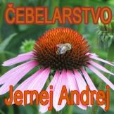Čebelarstvo Andrej Jernej