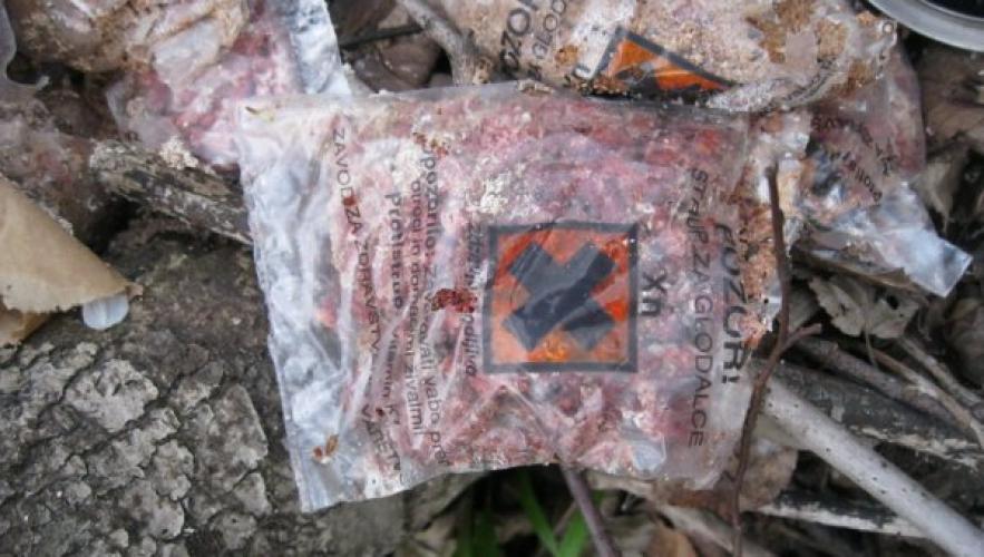 Ekološka patrulja je v začetku aprila na območju med Koroško Belo in Potoki odkrila med drugim večjo količino vreč s strupom za glodavce.