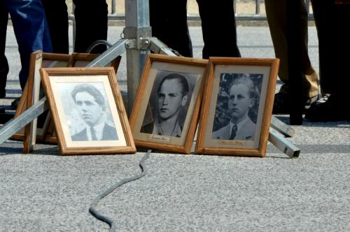 Slike žrtev, foto: A. Čerin.