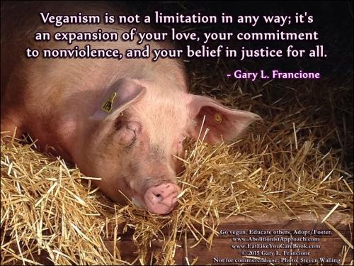 Veganstvo ni nikakršno omejevanje. Ravno obratno - je razširitev vaše ljubezni, zaprisege nenasilju in vašega načela pravičnosti.