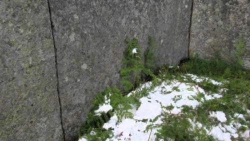 Savršeno pravilni kutovi unutar megalitnih zidova planine Shorie.
