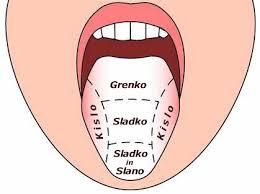 Rezultat iskanja slik za jezik okusi