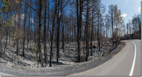 požar črni kal 2.dan