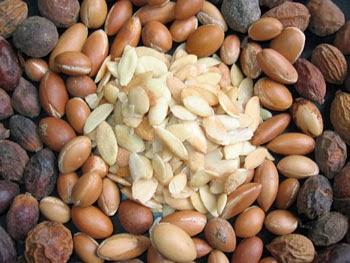 Od celih plodov do semen (vir: rechercheorganics.blogspot.si)