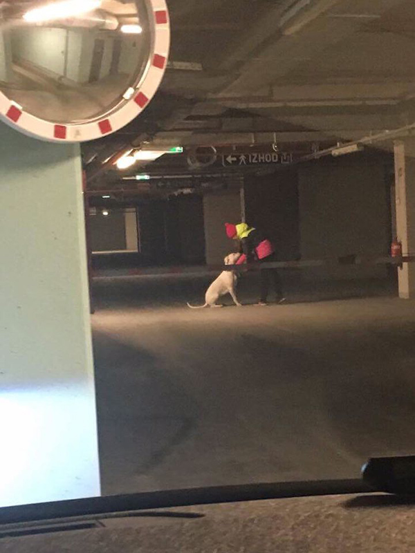 ... tukaj pa Tadeja in doga v garažni hiši pod Situlo. Sosedje se pritožujejo, da naj bi pozimi pes prihajal na stranišče kar v garažo.
