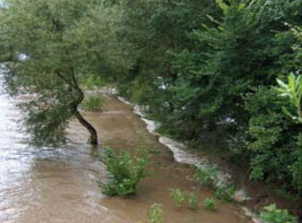 Fotografija 8: Mura pri Murecku / 22.8.2005