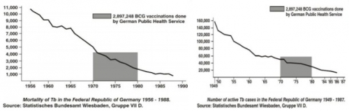 Graph - TB Mortality and Cases, Germany