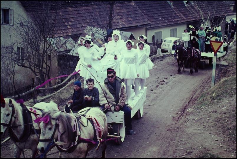 1966<br>Metlika - pustovanje - belokranjska vigred  <br>3,5 x 4 cm<br>Inv. št.: E138