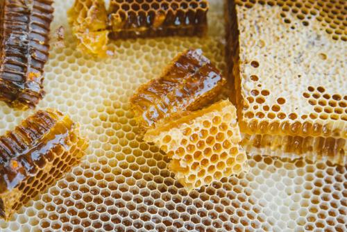 Rezultat iskanja slik za čebelji med slike