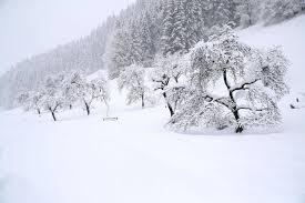 Rezultat iskanja slik za sneg slike