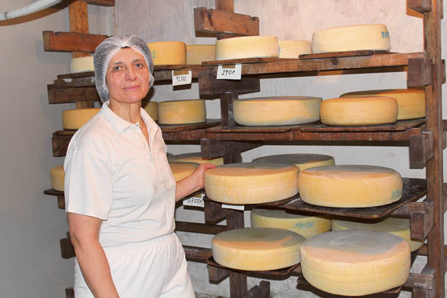 V zorilnici sirov