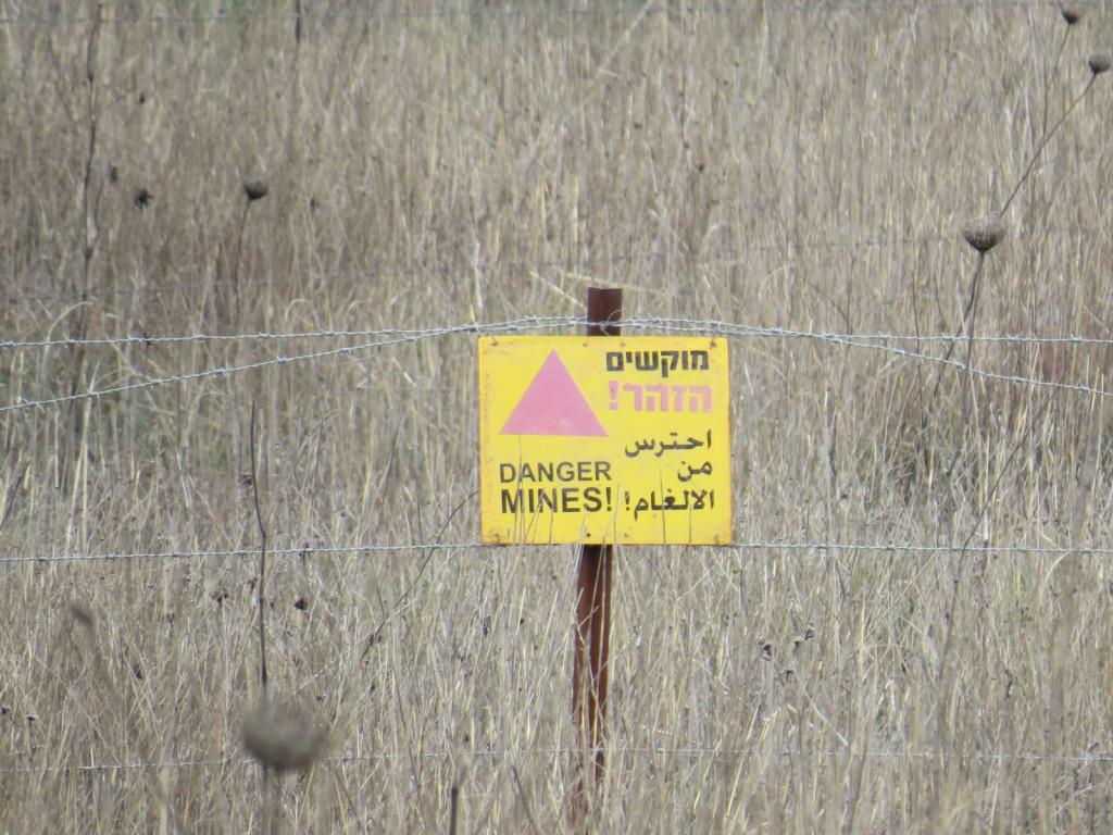 Na Golanski planoti ob meji s Sirijo je še veliko minskih polj iz leta 1967, kjer mine še niso aktivirane. Ker tod beduini pasejo svojo živino še vedno prav tako kot pred 3000 leti, se zgodi, da včasih ni potrebno poskrbeti za zakol...
