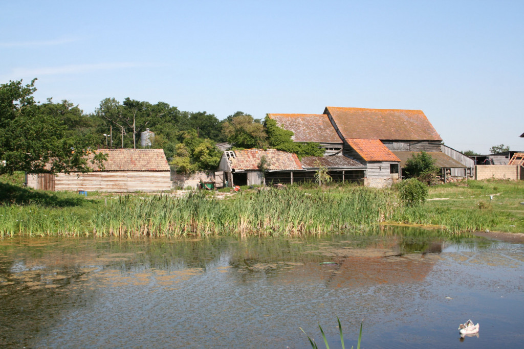 Pogled na ekološko kmetijo Hardwicke