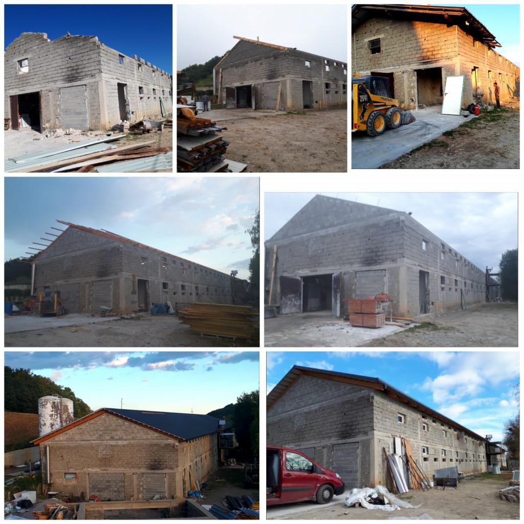 Obnovili so streho in zamenjali kritino, prenovili so vse inštalacije ter nabavili primerno opremo za piščance.