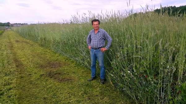 Zvone Černelič na površini degradirane zemlje, ki jo je oživil z biodinamičnim kmetovanjem ,ki jo