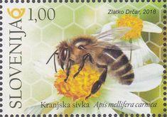 World Bee Day  (Bees) . Slovenia 2018