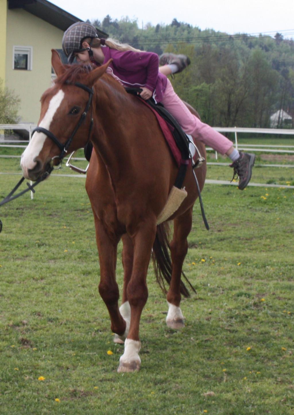 Seskok s konja