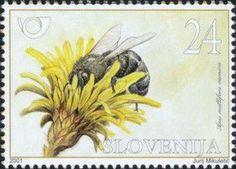 BEE STAMP FROM SLOVENIJA