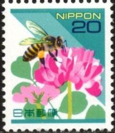 Honey Bee (Apis mellifera ssp.), Chinese Milk Vetch (Astraga