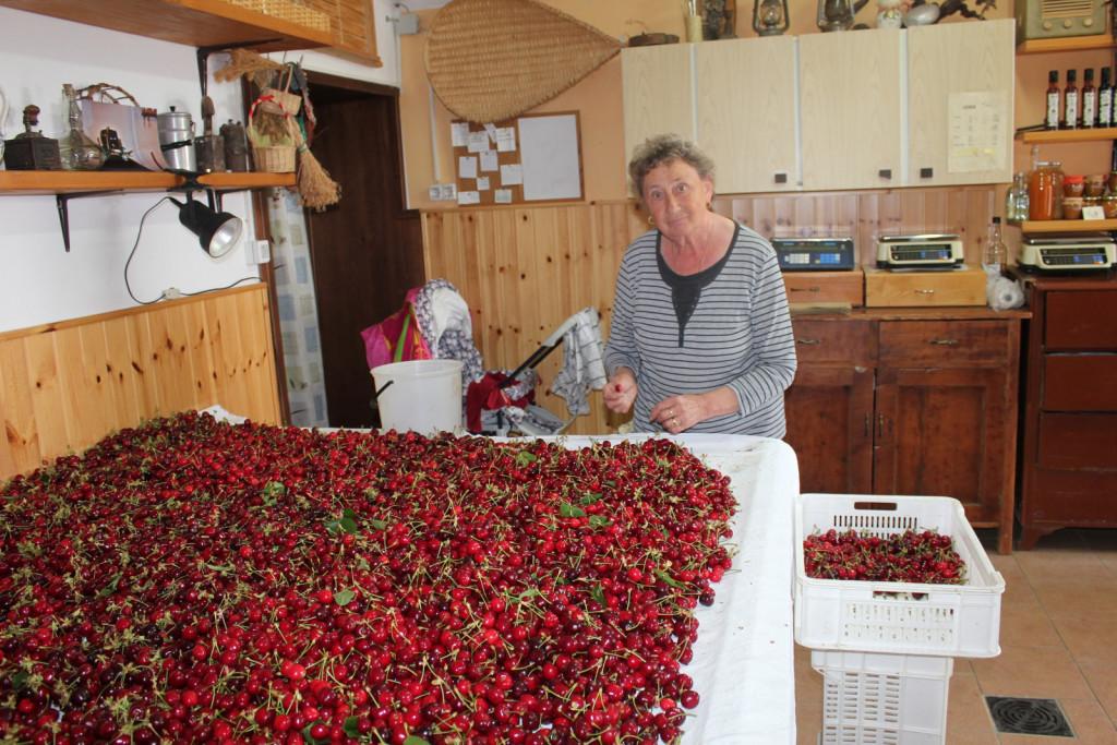 Nona Adrijana je štiri desetletja prodajala češnje na tržnici v Kranju, danes pa pomaga pri prebiranju češenj.