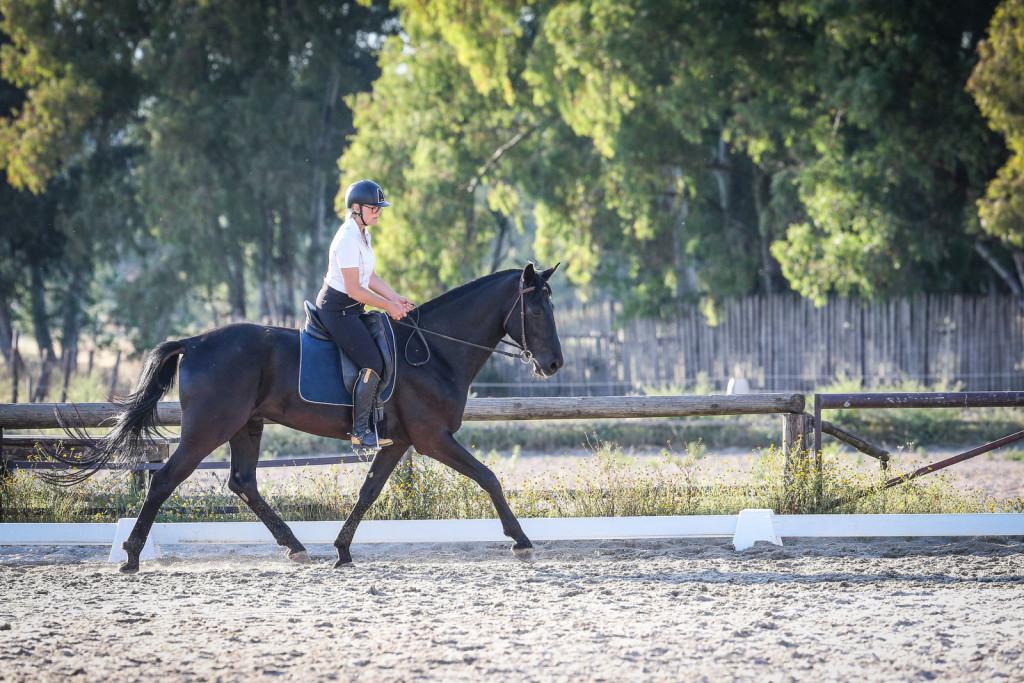 Petra išče s konji lahkotnost, povezanost in užitek.