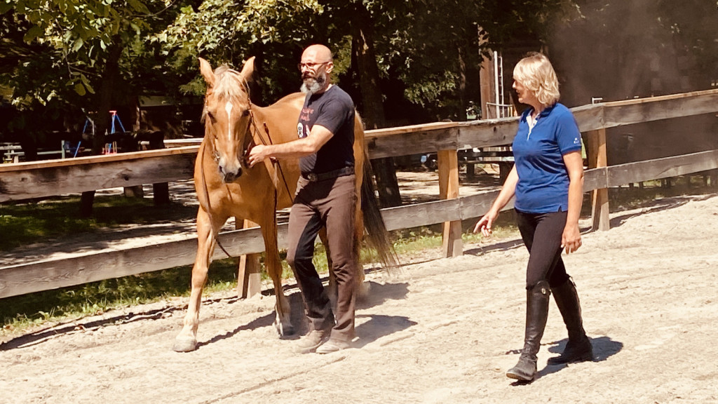 Petra s svojimi konji veliko dela na tleh in jih lonžira. Svoje znanje prenaša tudi na svoje učence.