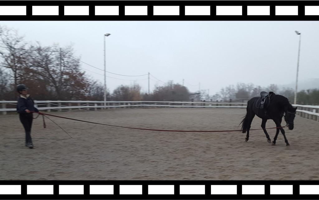Za boljše zavedanje drže, mimike in gibanja, s tem pa sporočil, ki jih posredujemo konju preko svojega telesa, se občasno snemajte, ko lonžirate svojega konja.