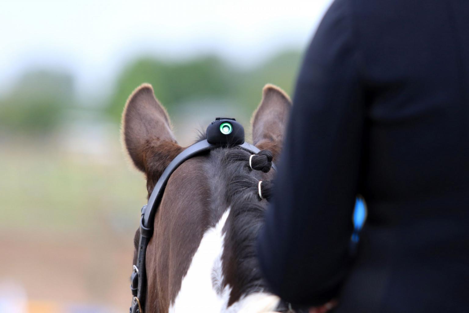 Zelena luč na napravi pomeni, da je konjeva glava pred oziroma na vertikali.