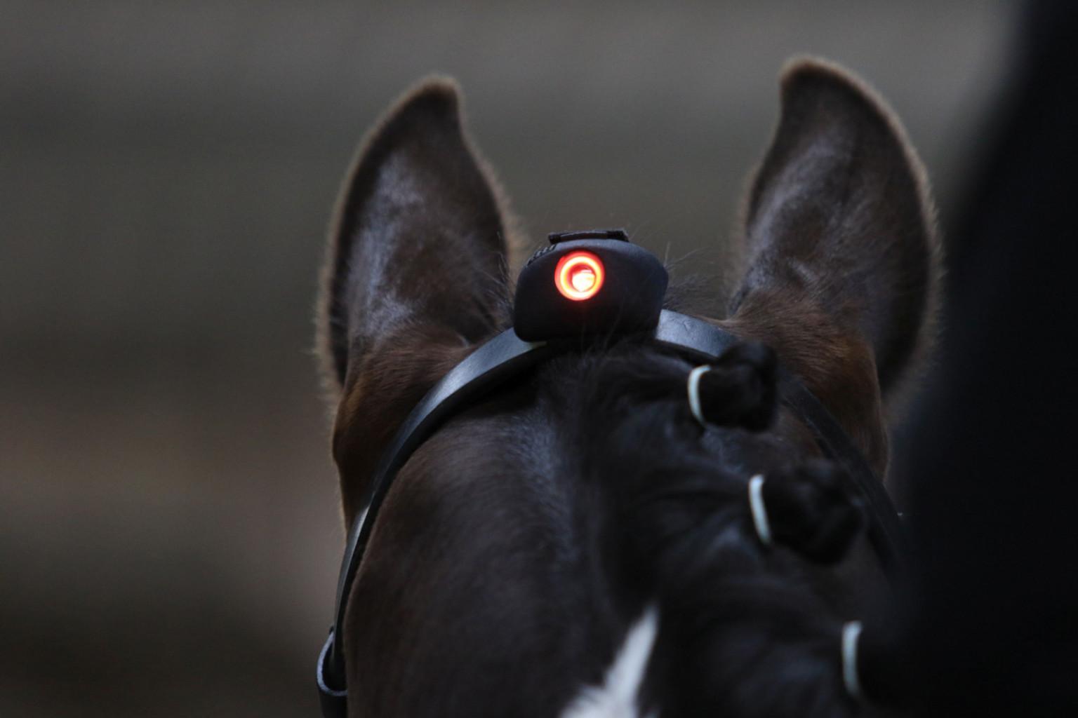 Ko zasveti rdeča luč, jahač ve, da je konjeva glava v nepravilnem položaju.