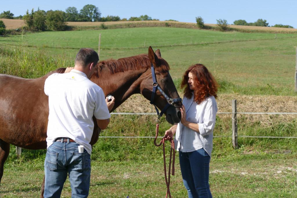 Lucija Lešnjak in Mihael Munda s konjskim pacientom, na katerem sta demonstrirala terapijo.