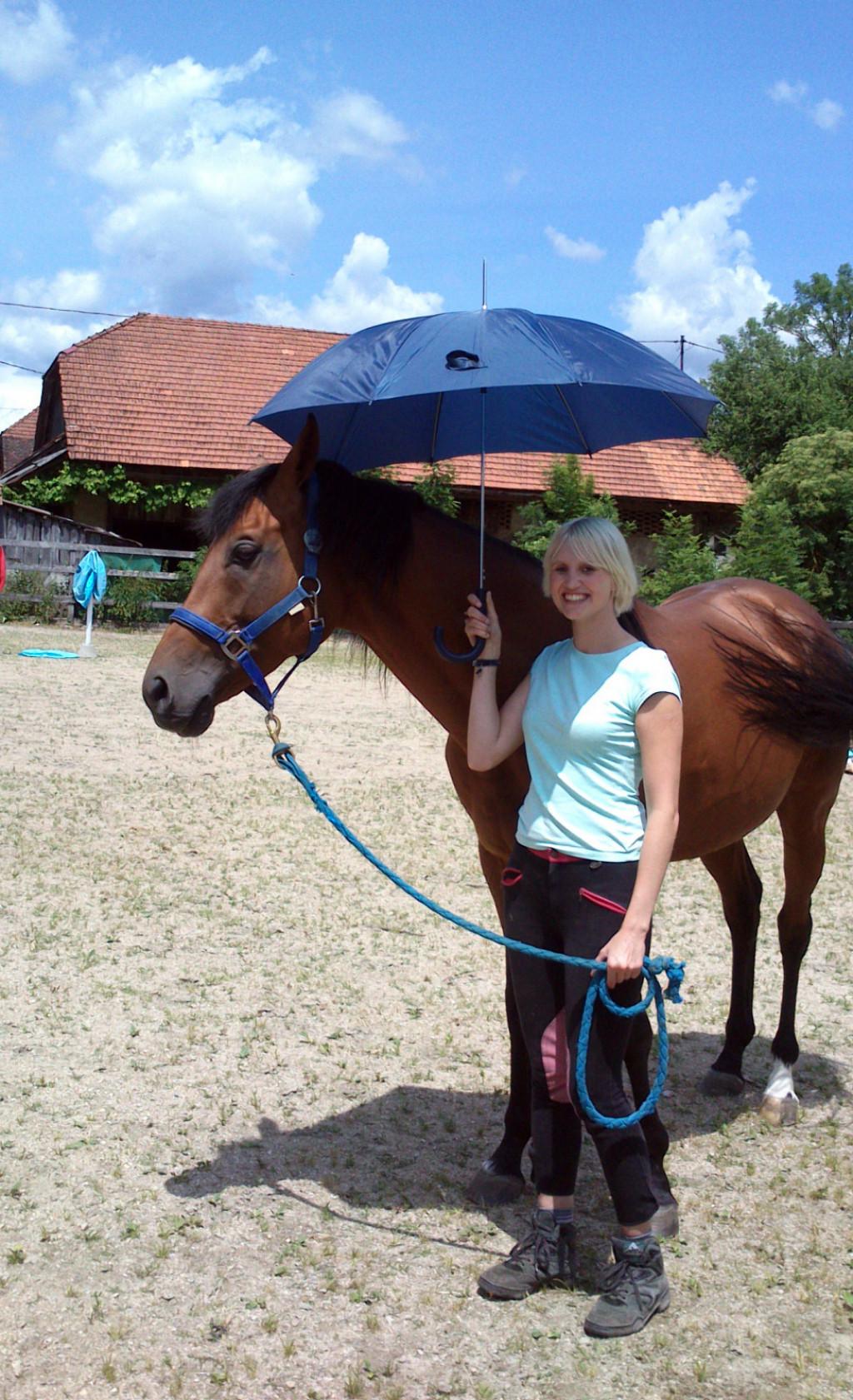 Naj bo učenje zanimivo! Mladega konja lahko postopoma, predvsem pa nežno navajamo na nove stvari.