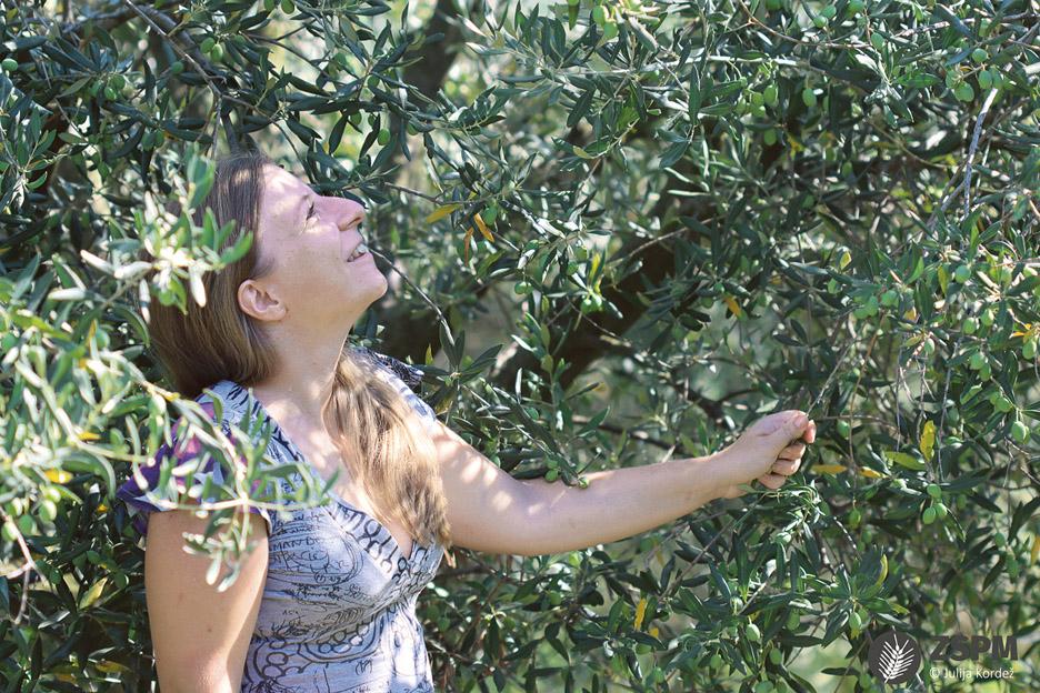 Martina Veršnik med oljkami (Fotografija: Julija Kordež)