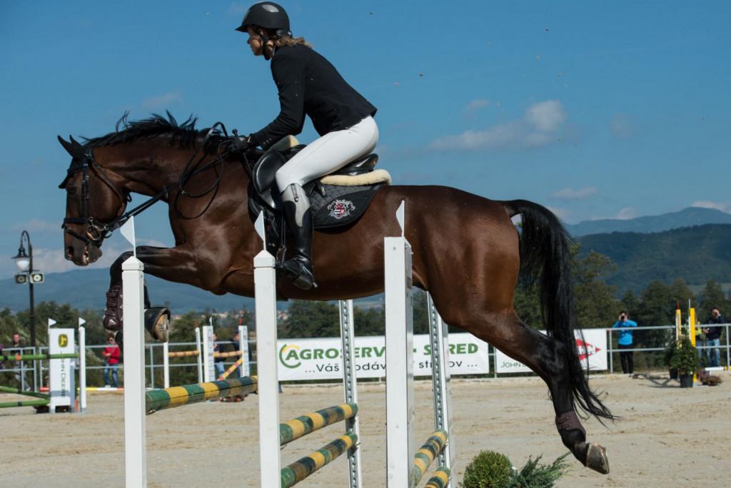 Tudi med gostovanjem na turnirjih je potrebno konjem zagotoviti dovolj gibanja.