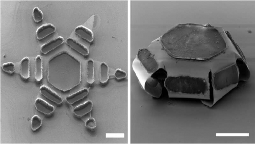 Researchers engineer tiny machines that deliver medicine efficiently