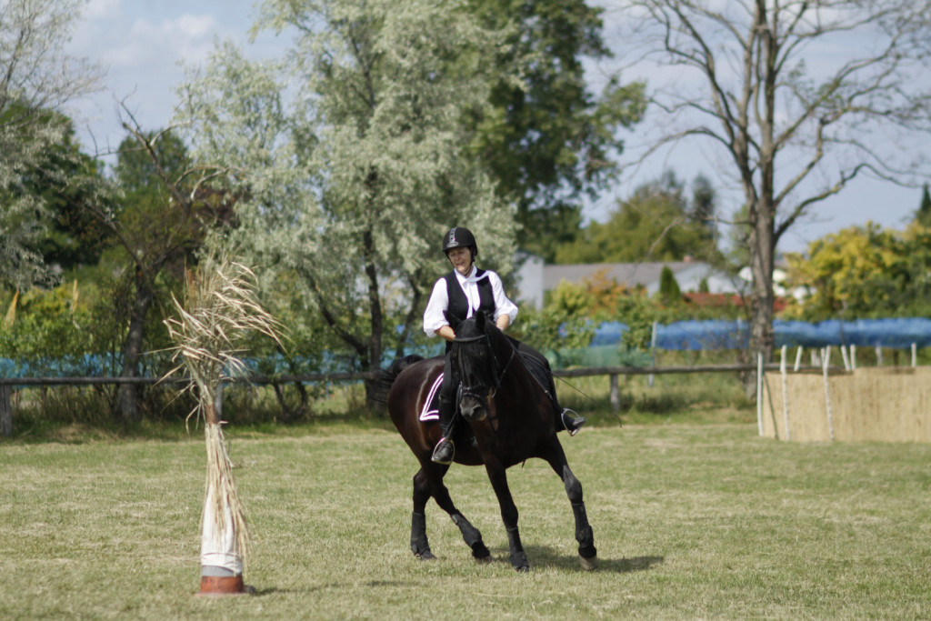 Kadar se konj ni zmožen previti preko trupa, se vzrok lahko skriva v slabi gibljivosti rebrne kletke.