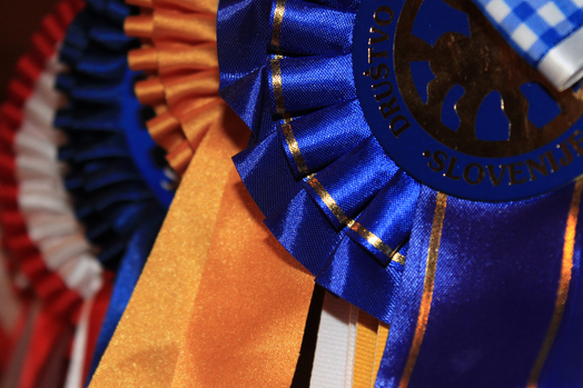 Rozete se vedno podelijo prvim petim tekmovalcem v določenem barvnem redu, vendar se vrstni red razlikuje po državah.