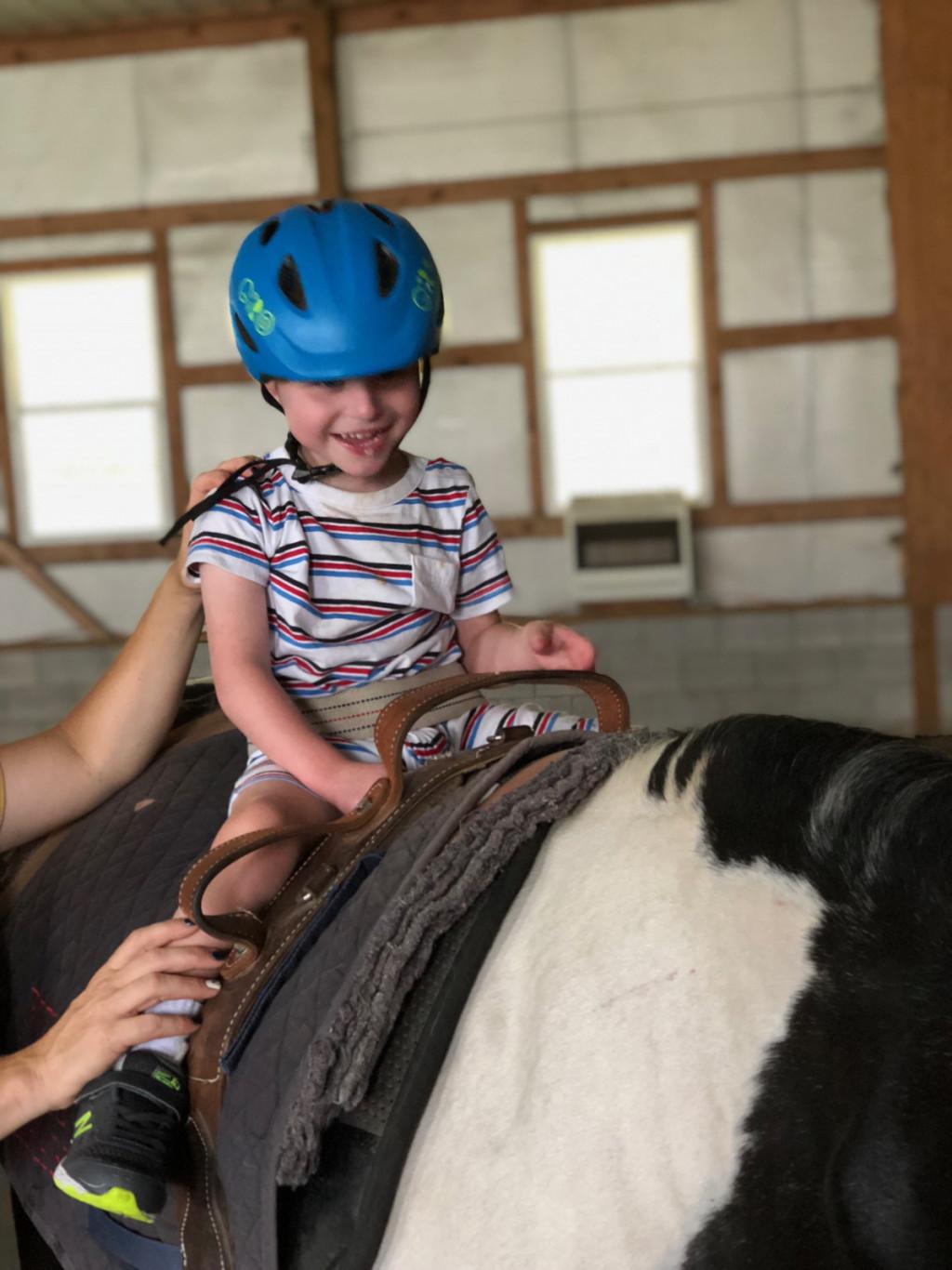 Višina vihra, ki mora biti izrazit in dolg, vendar ne previsok, naj bi bila od 150 do 158 cm, kar se do neke meje lahko prilagaja višini terapevta, saj mora ta zaradi varnosti in terapije vedno doseči ramo pacienta na konju.