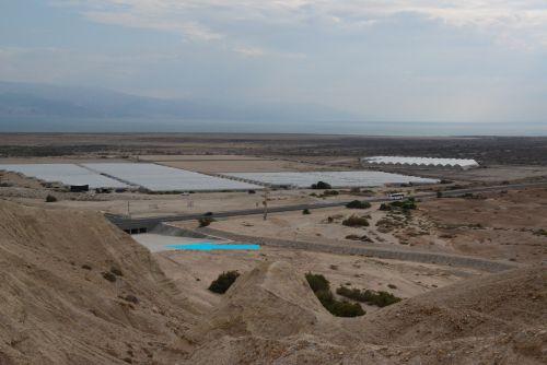Plastenjaki za zgodnjo zelenjavo v puščavi ob Mrtvem morju