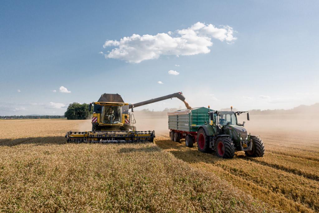 Kmetija se brez zemlje ne more razvijati:  žetev pri Meoličevih.