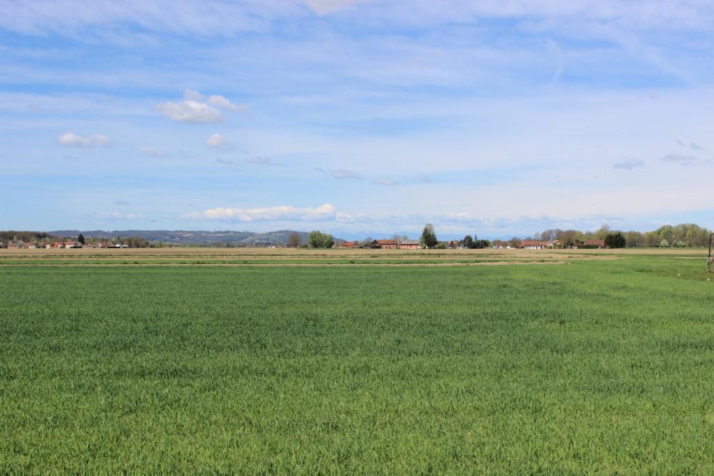 Neuradno naj bi bilo v Apaškem polju v rokah Avstrijcev že 200 hektarjev.