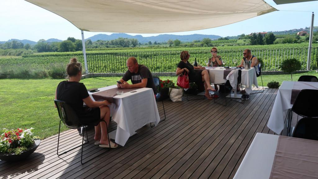 Počitnice med briškimi vinogradi