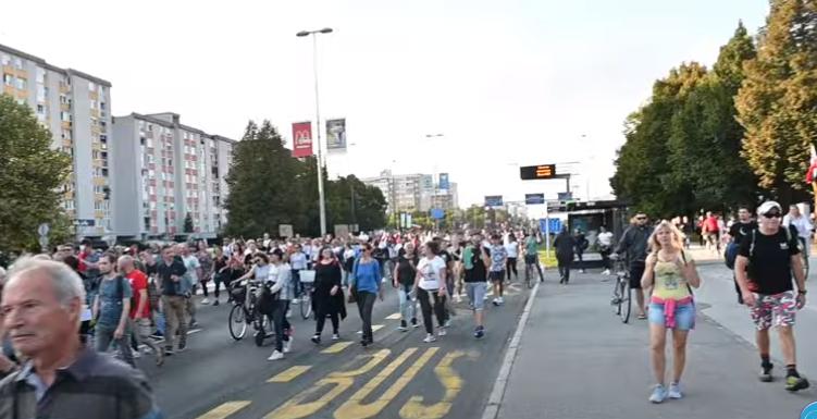 Slika iz zadnjih protestov, ki jih je organiziral predsednik Resni.ca Zoran Stevanović. (Foto:Youtube)